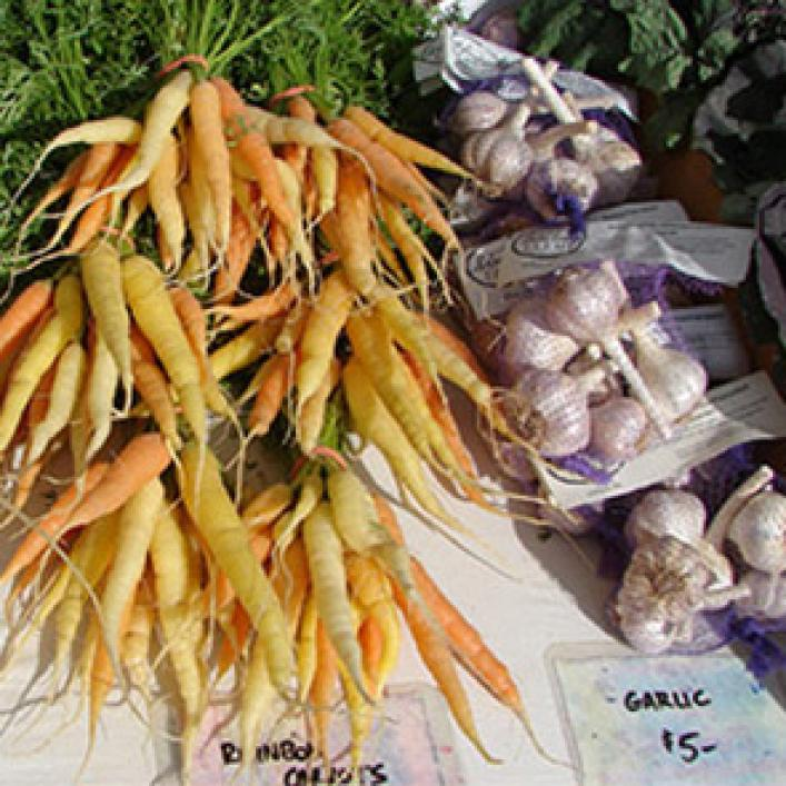 Carrots and garlic for sale at market